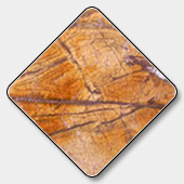 Indian Rain Forest Brown Marble Tile
