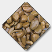 Natural Pebbles Stone Manufacturer
